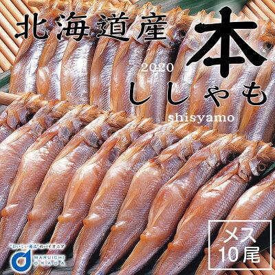 #元気いただきますプロジェクト 北海道産 本ししゃも メス 10尾