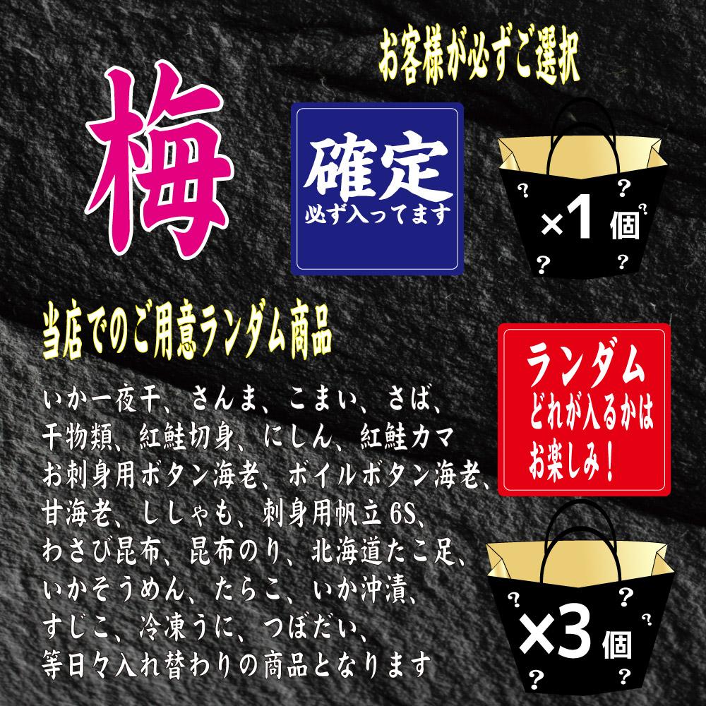 送料込 福袋 北海道海鮮福袋セット(梅)