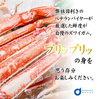 北海道沙留加工 本ずわいがに姿 沙留加工(1尾)