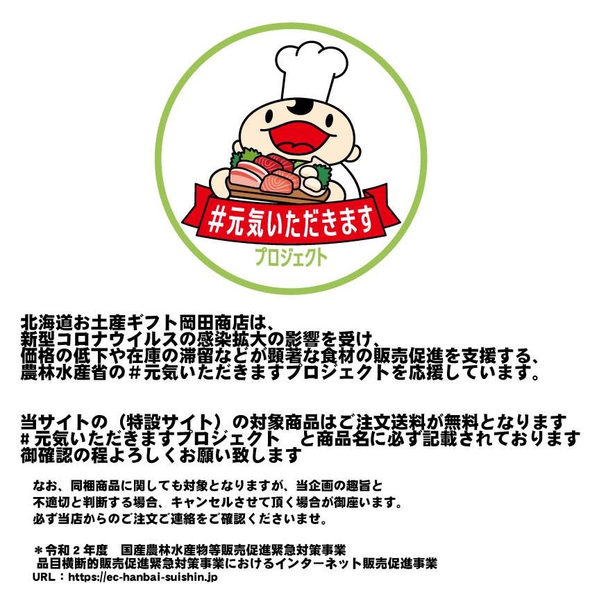 #元気いただきますプロジェクト 北海道 赤肉メロン 2玉セット